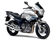 Group Bike 900cc o + (o similar)